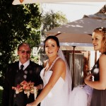 creativenook_wedding_decor_langkloof_roses_3