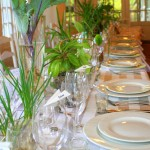 creativenook_wedding_decor_winelands_18