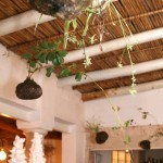 creativenook_wedding_decor_winelands_23