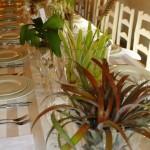 creativenook_wedding_decor_winelands_9